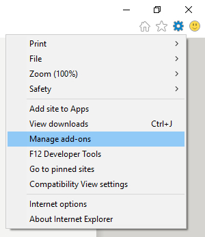 Internet Explorer - Manage add-ons - Computer maintenance